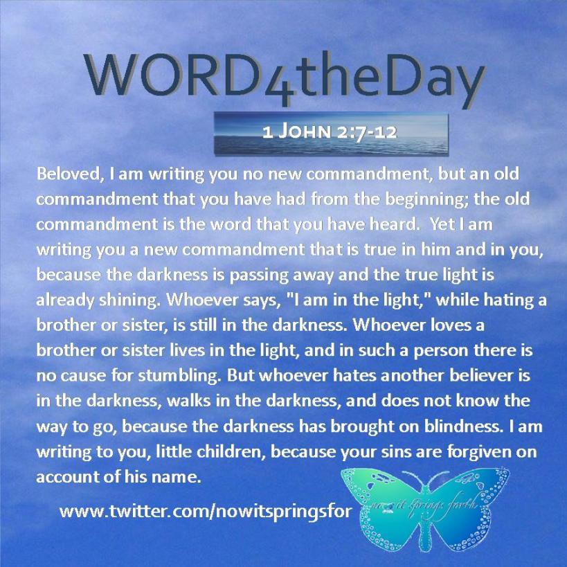 1 John 2 7-12