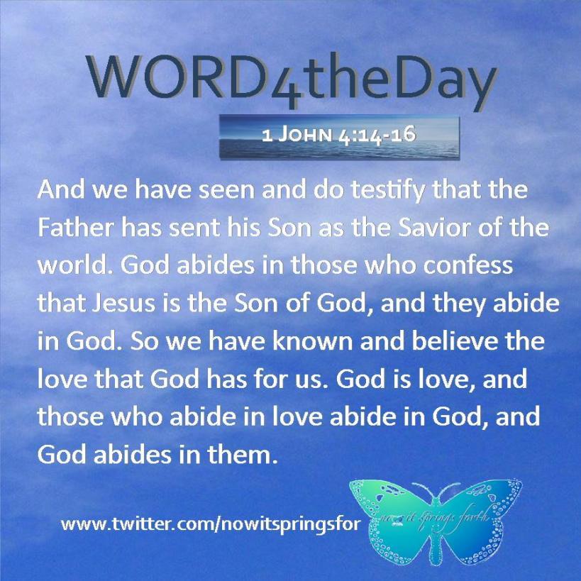 1 John 4 14-16
