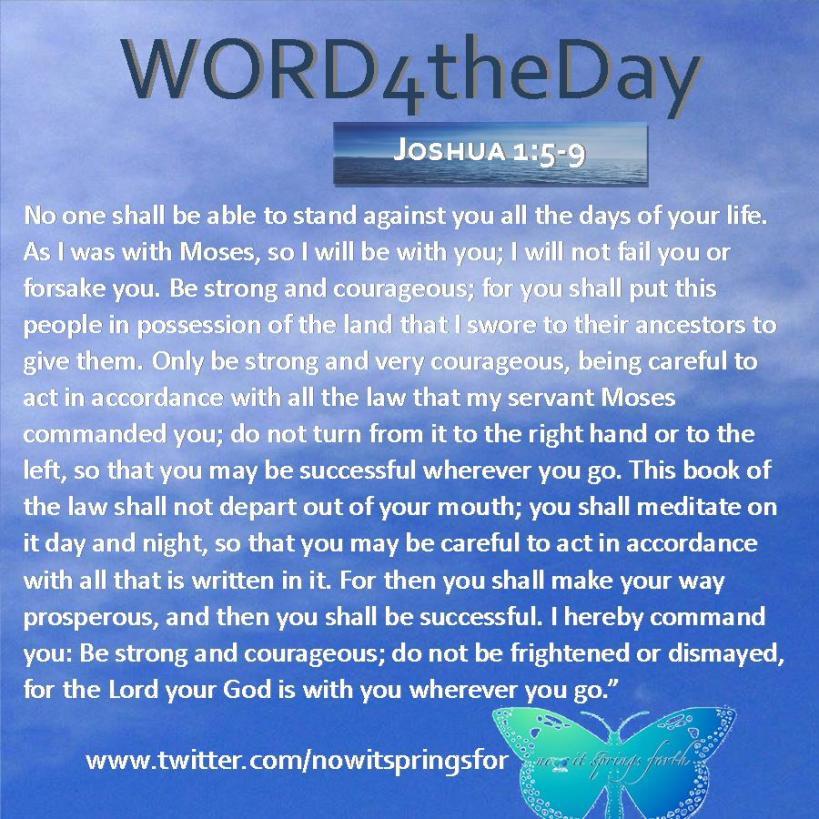 Joshua 1 5-9