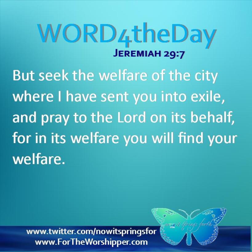 Jeremiah 29 7