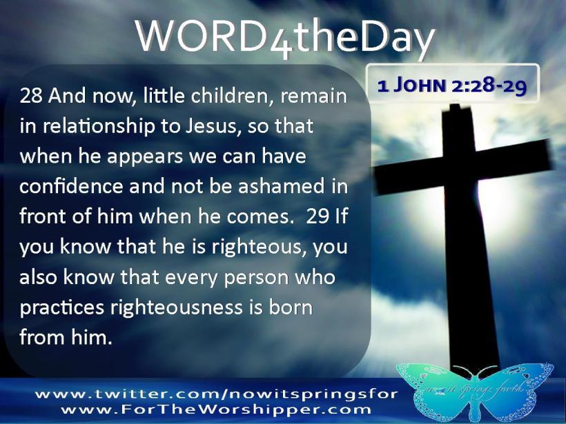 1 John 2 28-29