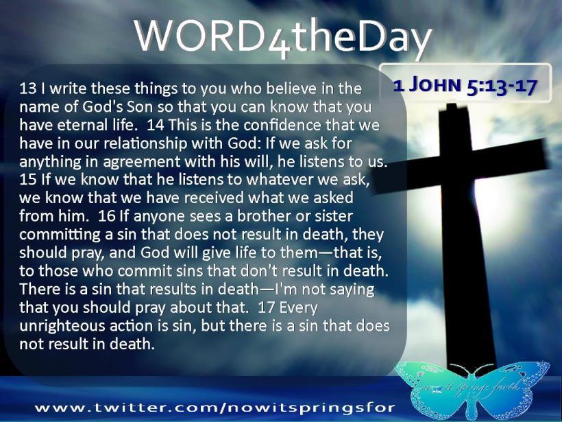 1 John 5 13-17