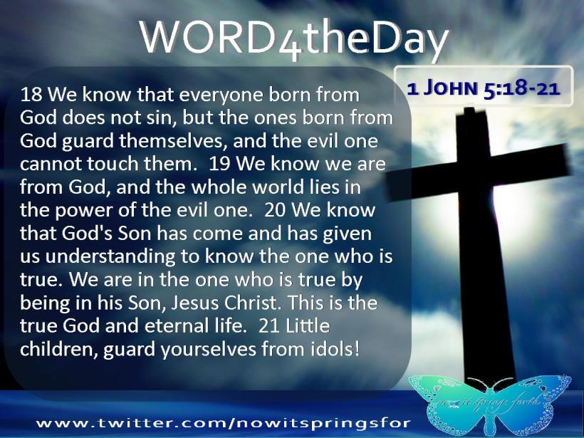 1 John 5 18-21