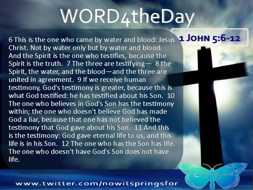 1 John 5 6-12