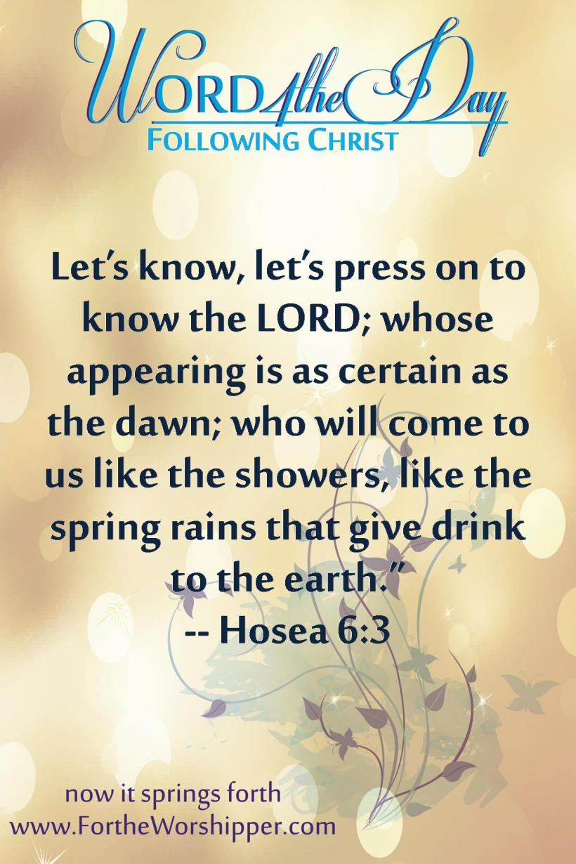 Hosea 6 3 Press on to know the Lord