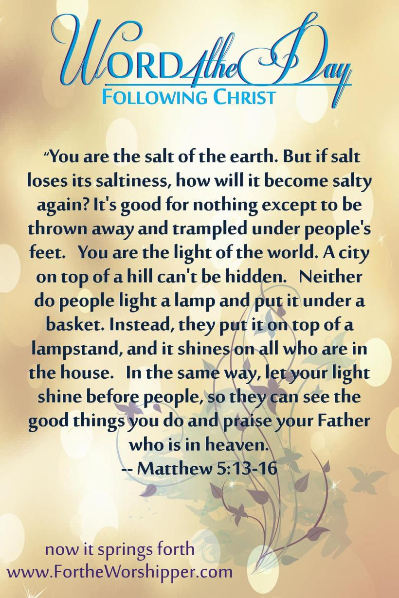 Matthew 5 13-16    05.24.14 Let your light shine